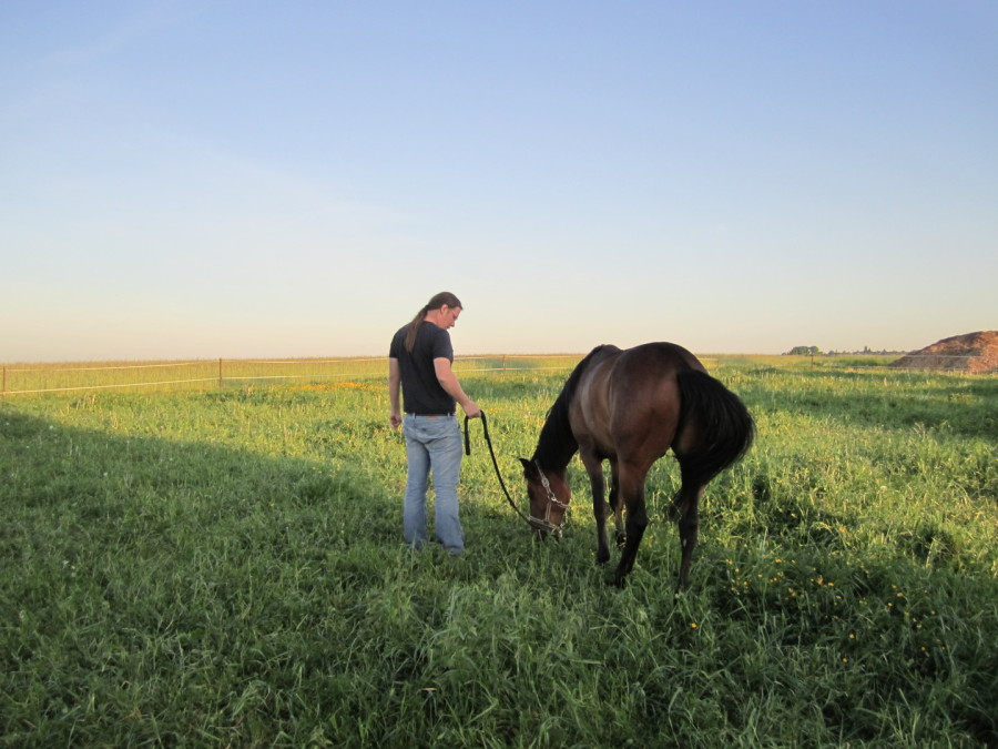 Betreuung von Pferd und Reiter auf der Winiranch